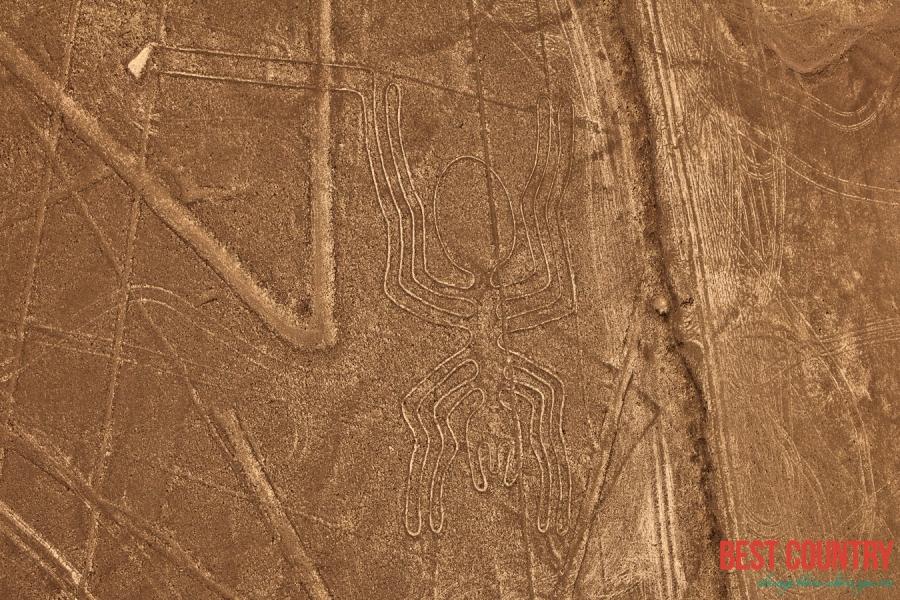 Какие тайны хранит пустыня Наска?