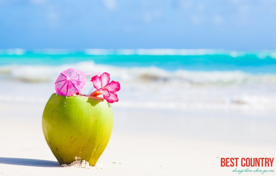 Сейшелы: репортаж с кокосовой пальмы