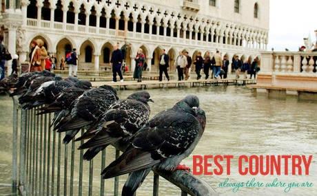 Почему Венеция ведет «партизанскую» войну с туристами и голубями?