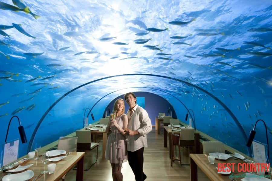 Dine underwater without getting wet