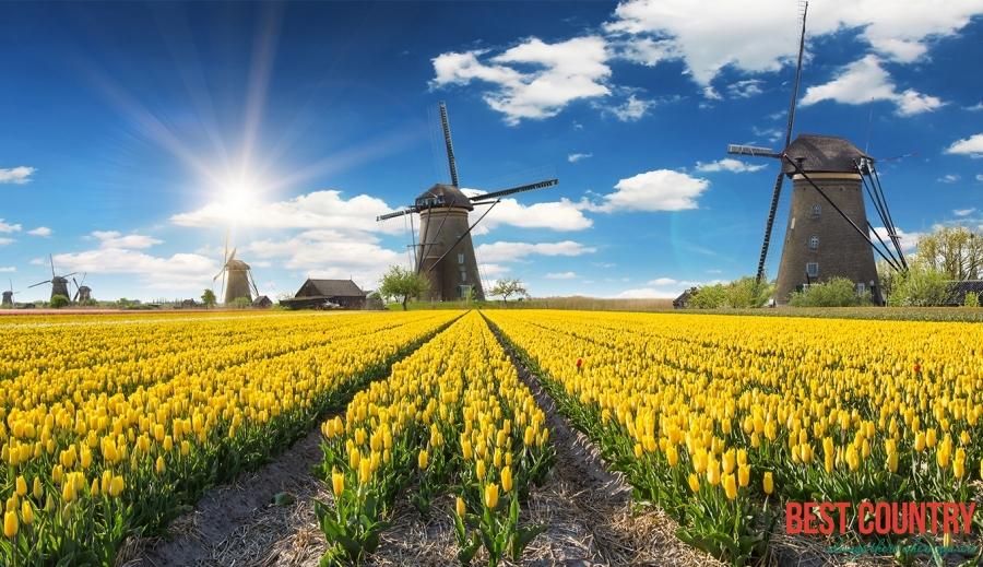 Климат Нидерландов