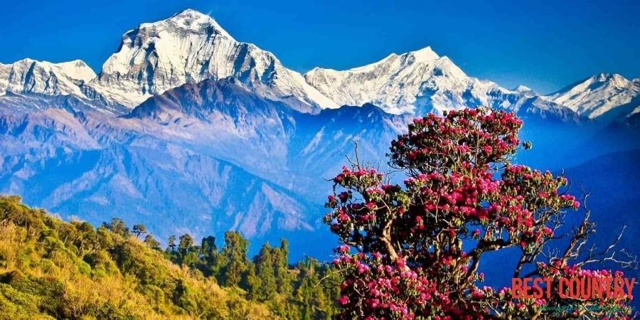 Климат и погода в Непале