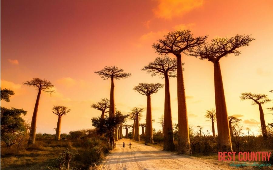 Climate of Madagascar