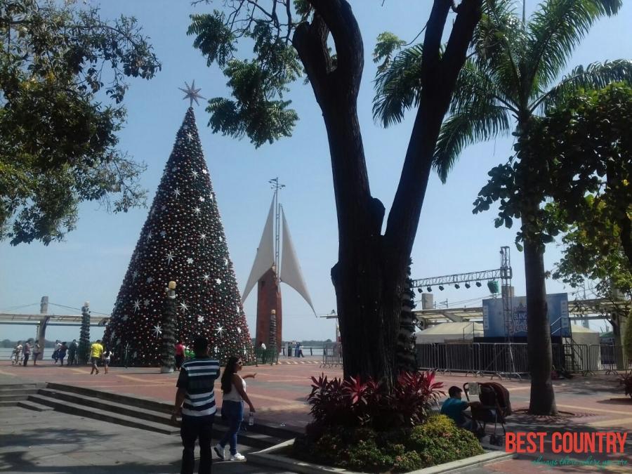 Christmas in Ecuador